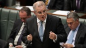 mmigration Minister Scott Morrison wants to remove references to the UN refugee Convention. Photo: SBS