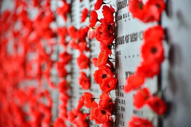 Bunga Poppy Photo: War Memorial, Canberra, Australia
