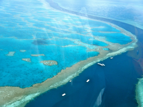 The Great Barrier Reef stretches for 2,300km along the North Queensland coastline.