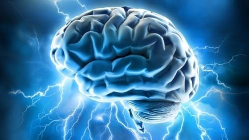 Brain power Source Wikimedia commons