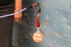 Lisa holding her empty dog leash and collar for a dog that was destroyed for being 'Too Slow'. Source: Cassandra Mulhern.