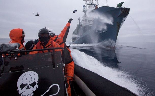 sea-shepherd-vessel
