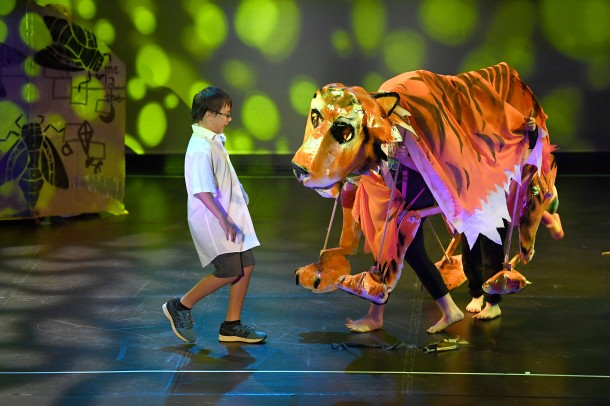 Fernvale State School The Tiger in I