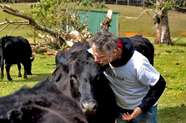 Anthony Walsgott Save A Cow Foundation
