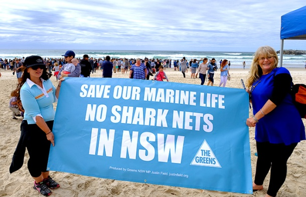Shark net protestors Ballina
