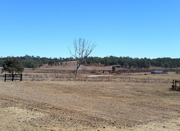 Drought affected farm land