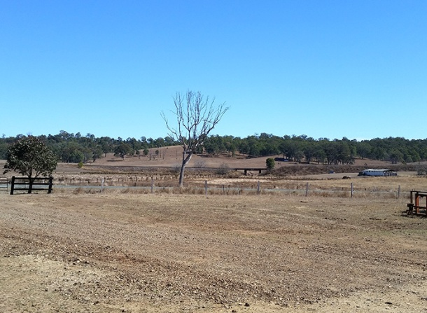Drought affected farm land