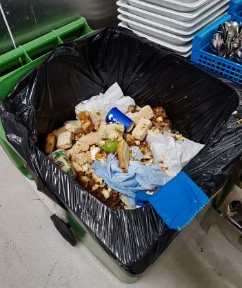 Food Wastage Image