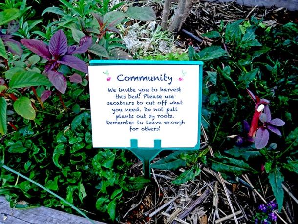 Jane Street Community Garden