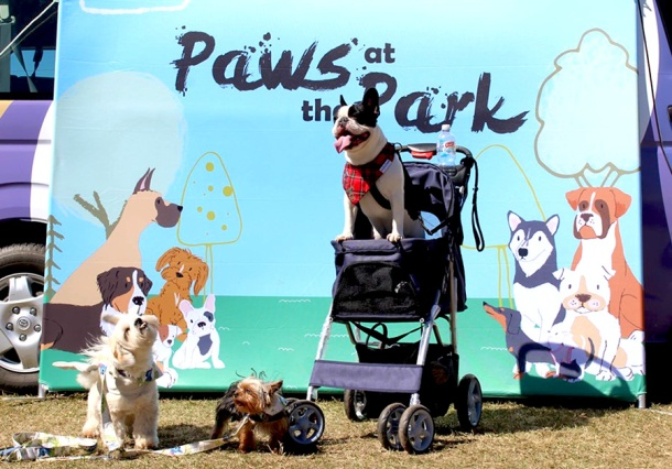 Paws at the Park photo booth