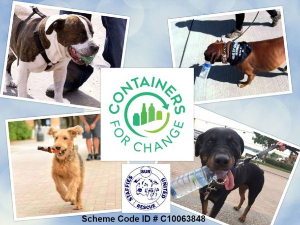 Change donations help Staffies United Rescue
