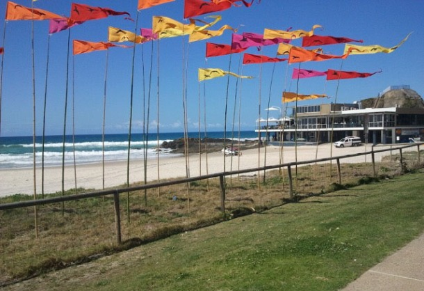 Bird flags Anne Leon