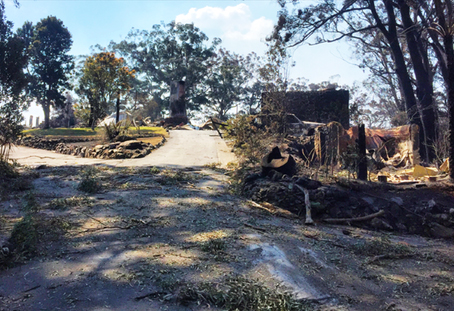 Bushfire devasted Binna Burra Lodge
