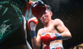 Boxers in the ring