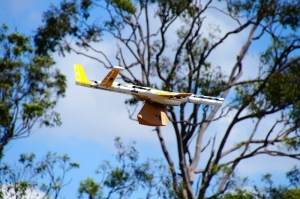Wing delivery drone carrying a package