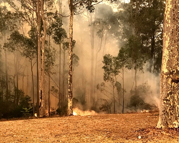 The 2019-2020 bushfire season had a disastrous impact on properties across rural NSW
