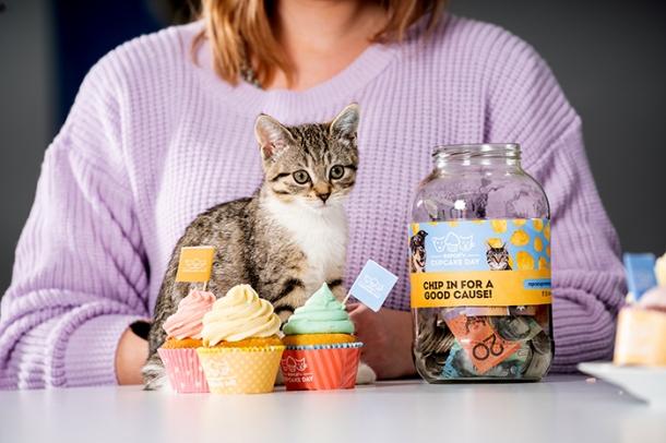 RSPCA's Cupcake Day